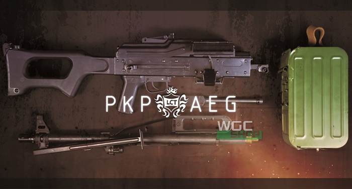 PKP LCT